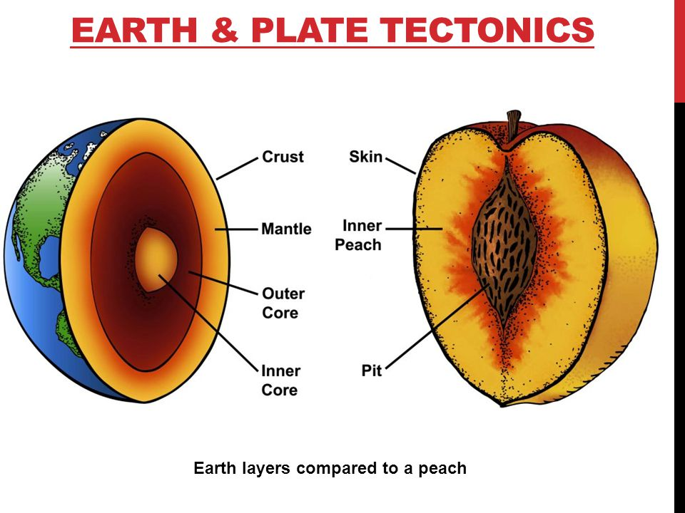 Image result for comparing earth with a peach