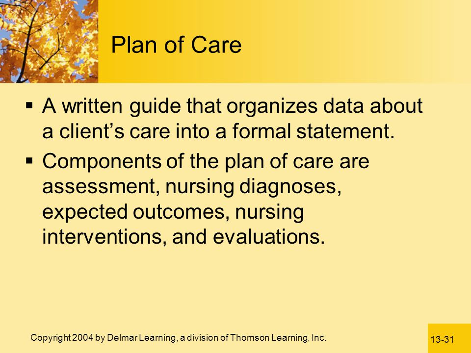 Plan of Care A written guide that organizes data about a client's care into a formal statement.