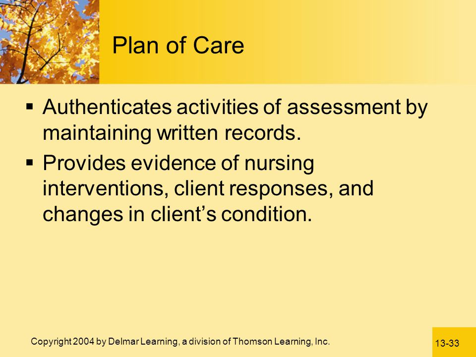 Plan of Care Authenticates activities of assessment by maintaining written records.