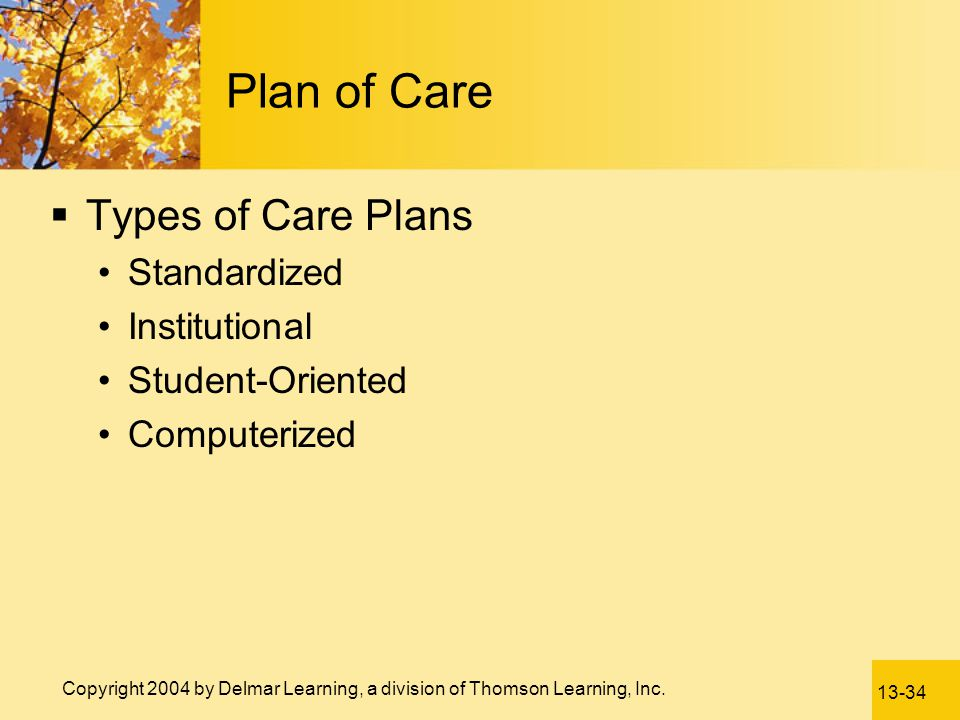 Plan of Care Types of Care Plans Standardized Institutional