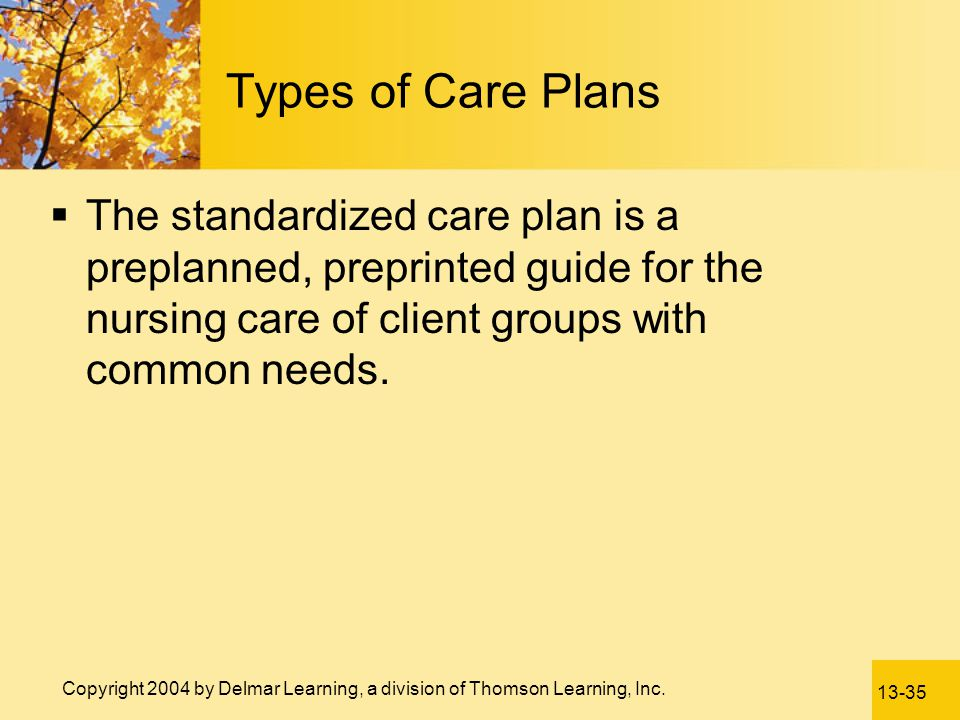 Types of Care Plans The standardized care plan is a preplanned, preprinted guide for the nursing care of client groups with common needs.
