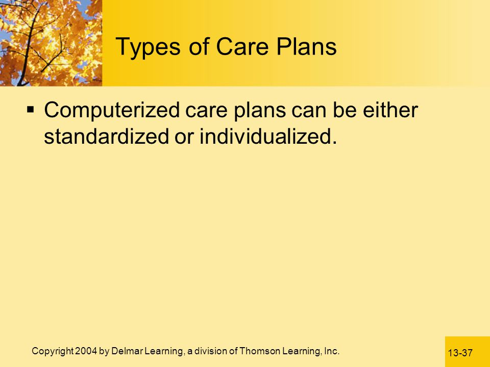 Types of Care Plans Computerized care plans can be either standardized or individualized.