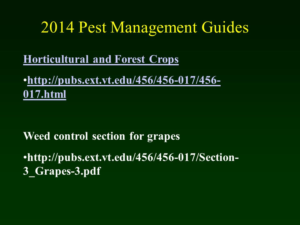 weed control management in crop production essay Graduate theses and dissertations graduate college 2014 interactions between cover crops and weed management in iowa's conventional cropping systems.