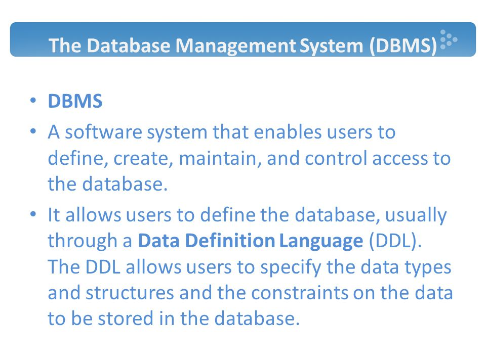 The Database Management System (DBMS)