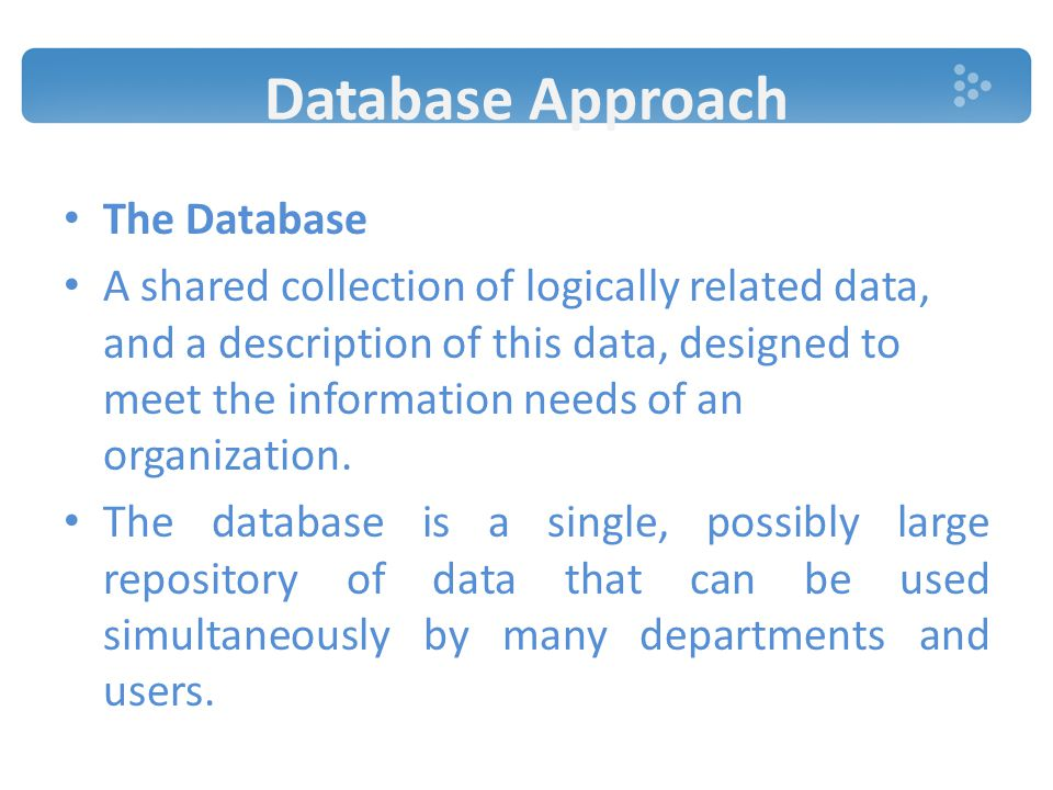 Database Approach The Database