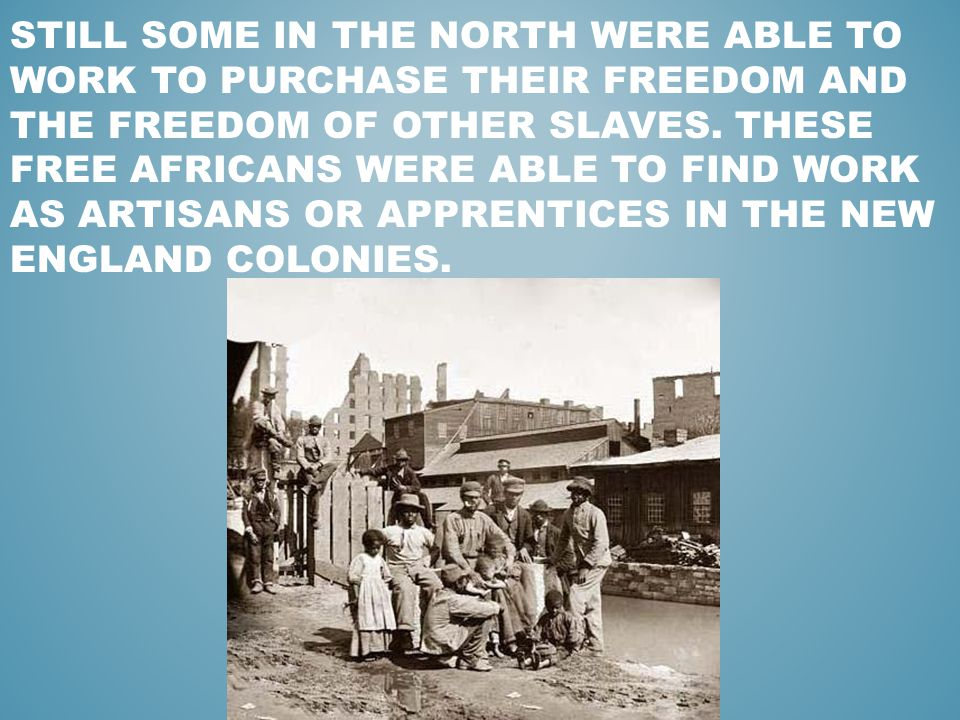 how free were blacks in the north Apush chapter 16 apush american how were free blacks viewed in the north but were native born african americans with their own history and culture.