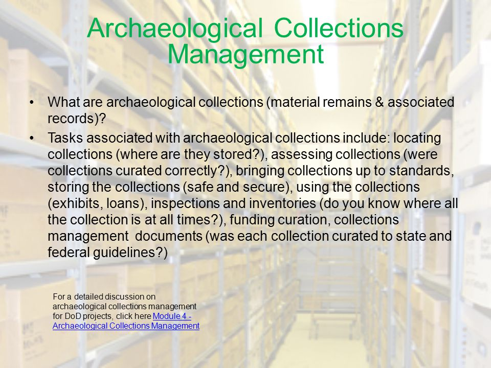 Archaeological Collections Management