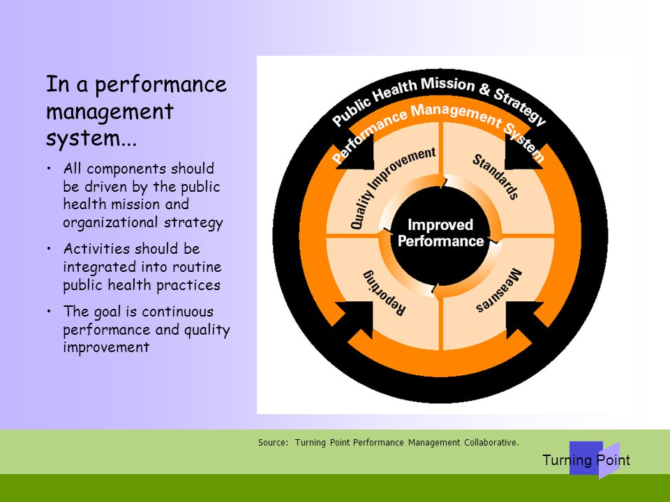 performance management systems and strategies pdf