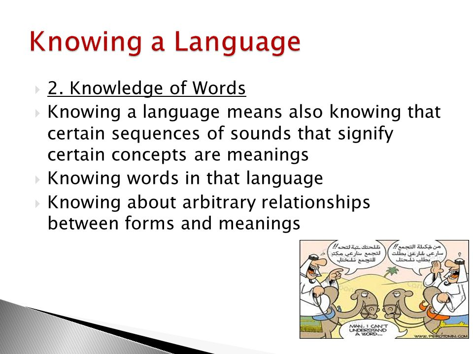 Knowing a Language 2. Knowledge of Words