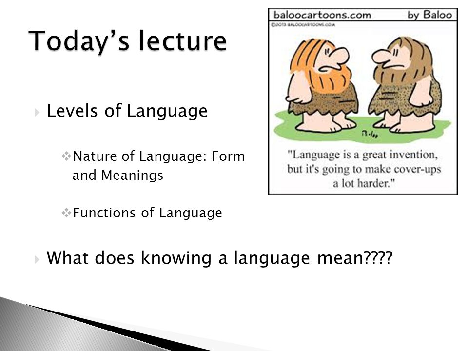 Today's lecture Levels of Language