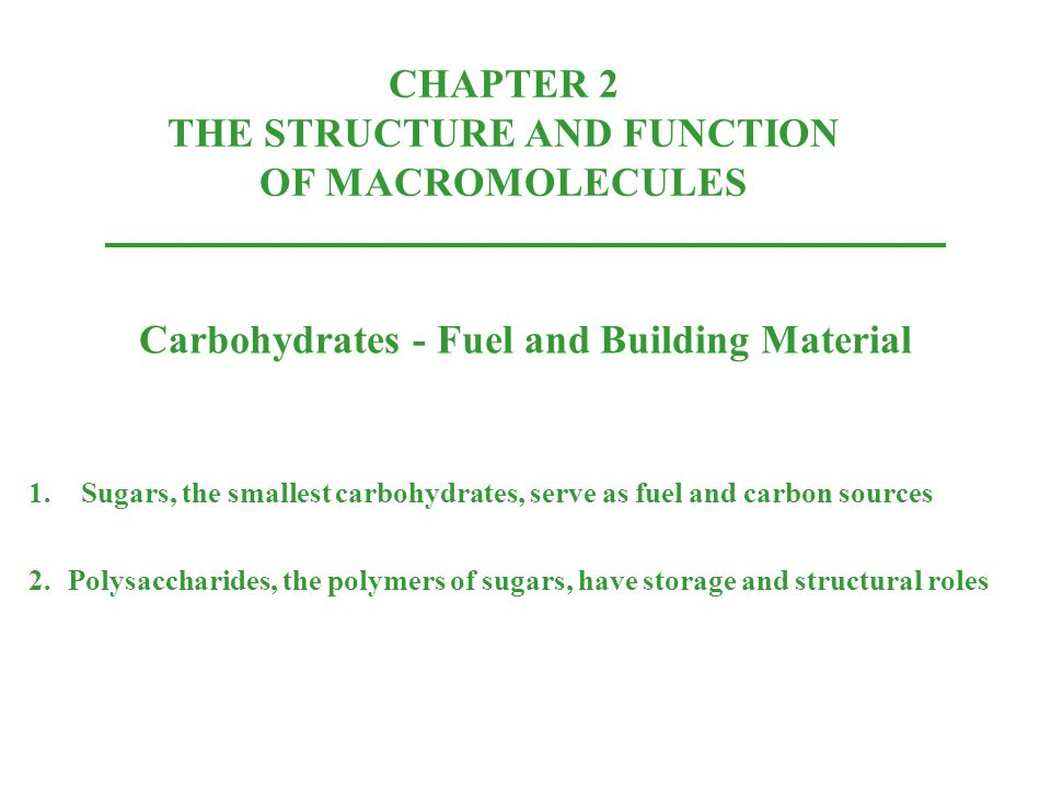 CHAPTER 2 THE STRUCTURE AND FUNCTION OF MACROMOLECULES
