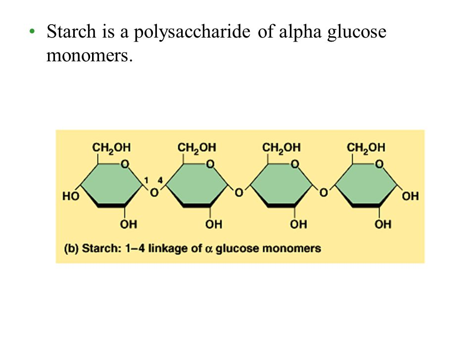 CHAPTER 2 THE STRUCTURE AND FUNCTION OF MACROMOLECULES ...