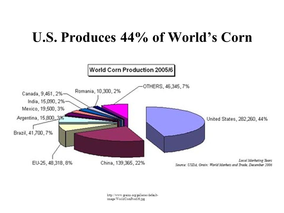 U.S. Produces 44% of World's Corn