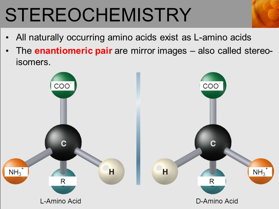 STEREOCHEMISTRY All naturally occurring amino acids exist as L-amino acids. The enantiomeric pair are mirror images – also called stereo-isomers.