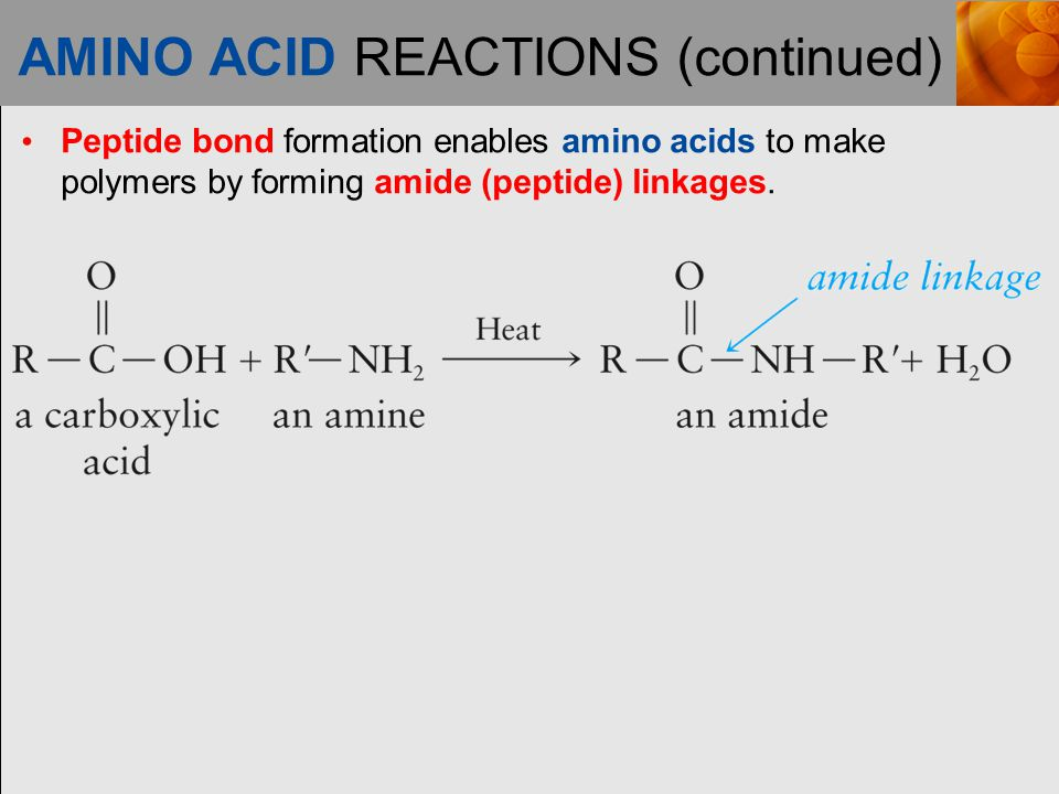 AMINO ACID REACTIONS (continued)