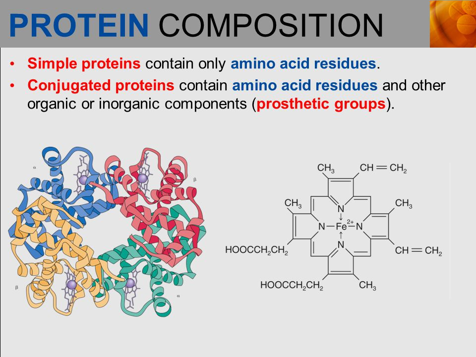 PROTEIN COMPOSITION Simple proteins contain only amino acid residues.