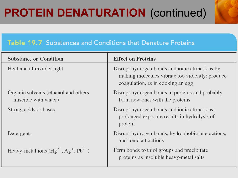 PROTEIN DENATURATION (continued)