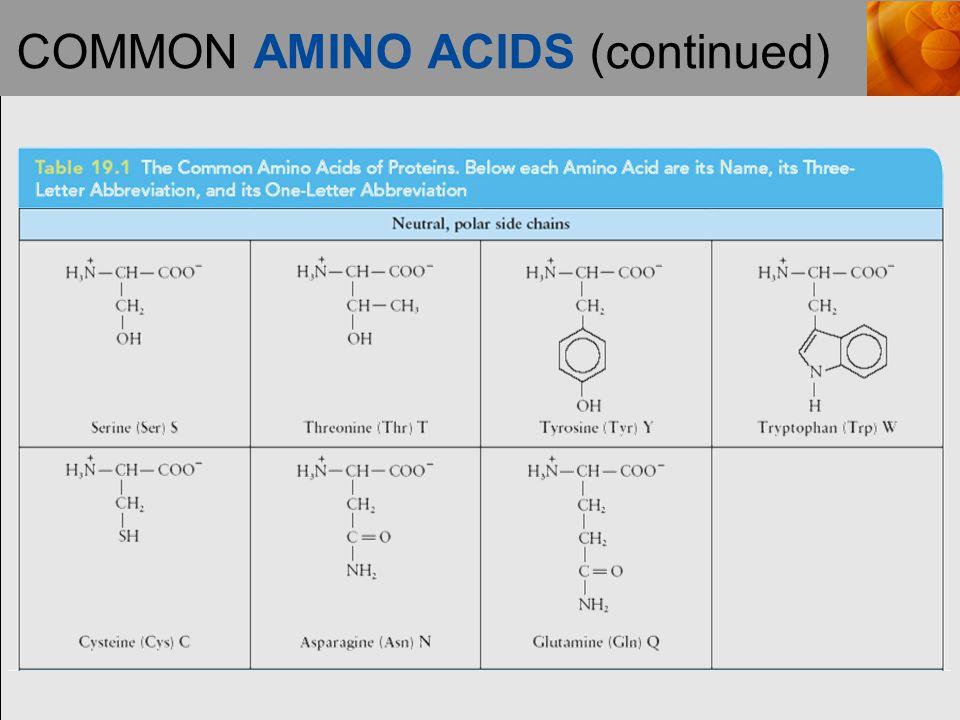COMMON AMINO ACIDS (continued)