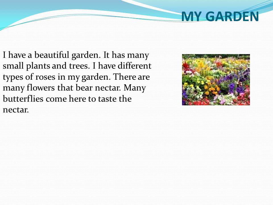 English My Garden Essay For Class 1 Home Designs Inspiration
