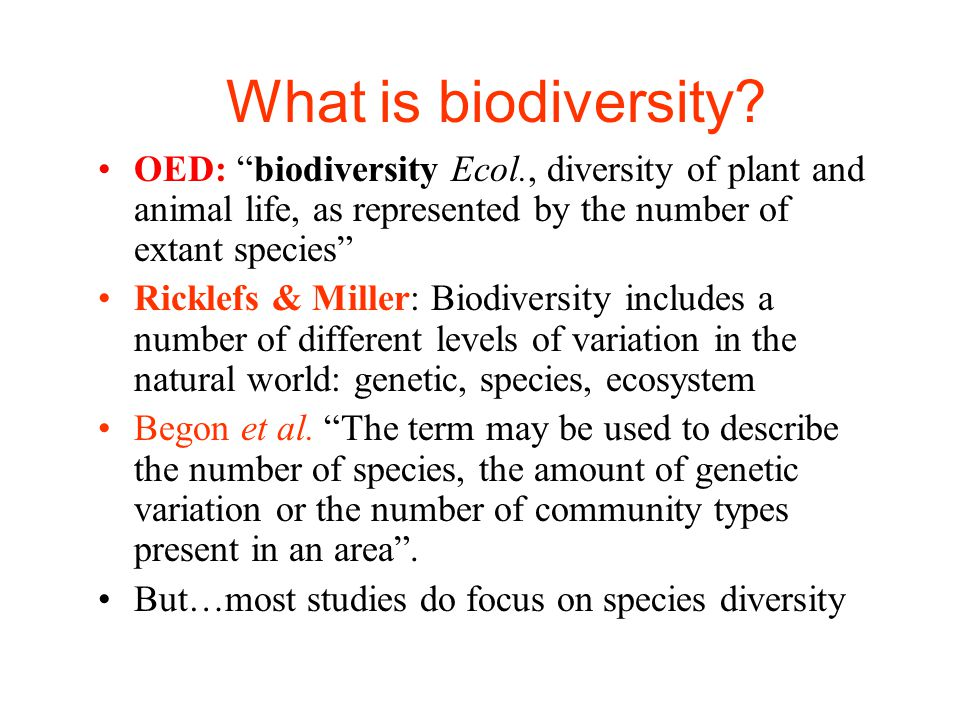 understanding the stability and diversity of an ecosystem Understanding how the loss of biodiversity affects the functioning there is mounting evidence that biodiversity increases the stability of ecosystem functions through time biodiversity loss and its impact on humanity.