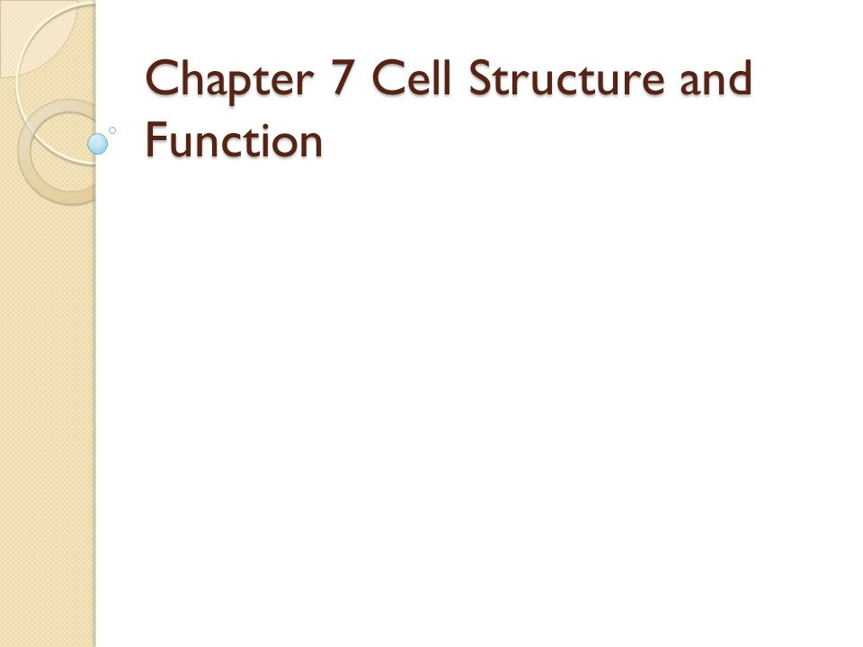 1 chapter 7 cell structure and function