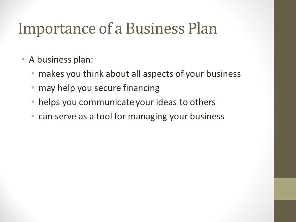 Developing a Business Plan - ppt download