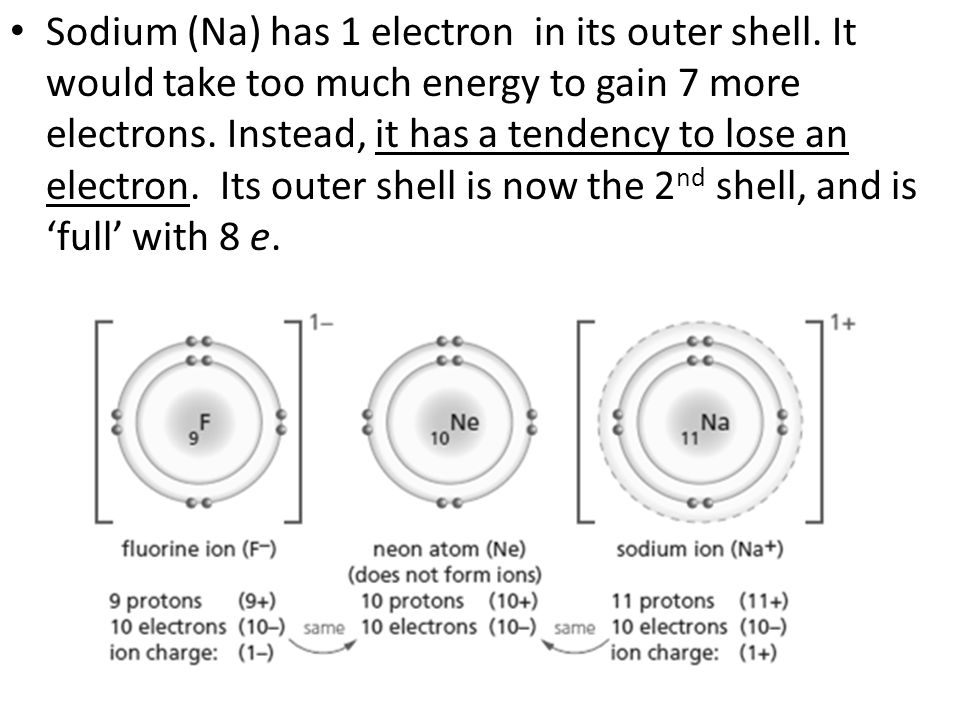Sodium (Na) has 1 electron in its outer shell