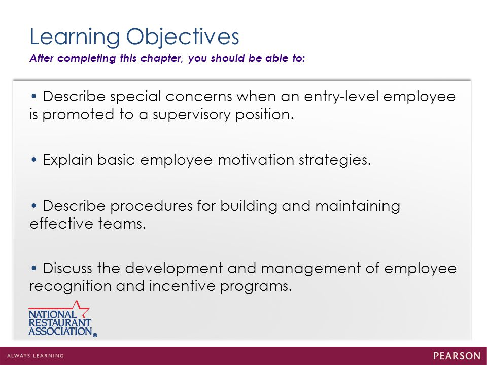 Foundations Of Effective Employee Performance  Ppt Download