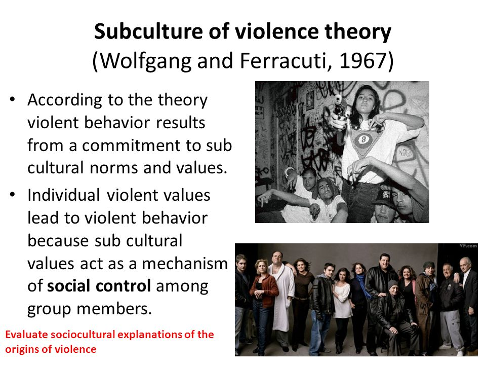 gangs sub cultural theories essay The subculture of street gangs such as the rattlers in albany, ga essay about structural theories and street gangs crime and delinquency subculture essay.