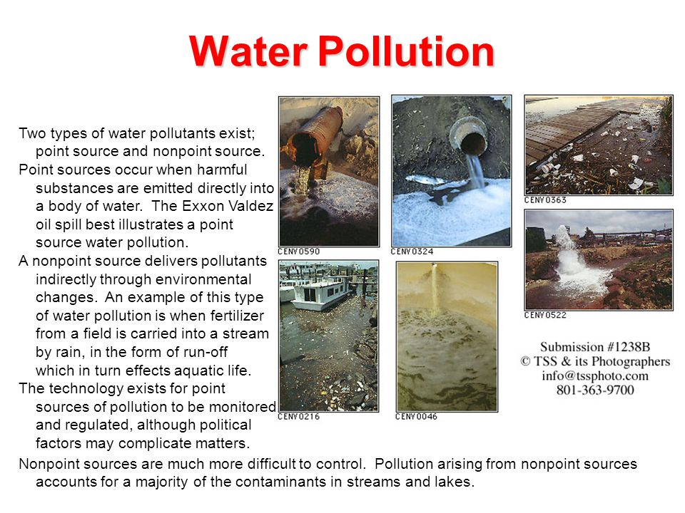 gizmo example pollution type What are some examples of toxic pollutants listed in the gizmo  read and  learn: besides toxic pollution, the other types of pollution are sediment pollution.