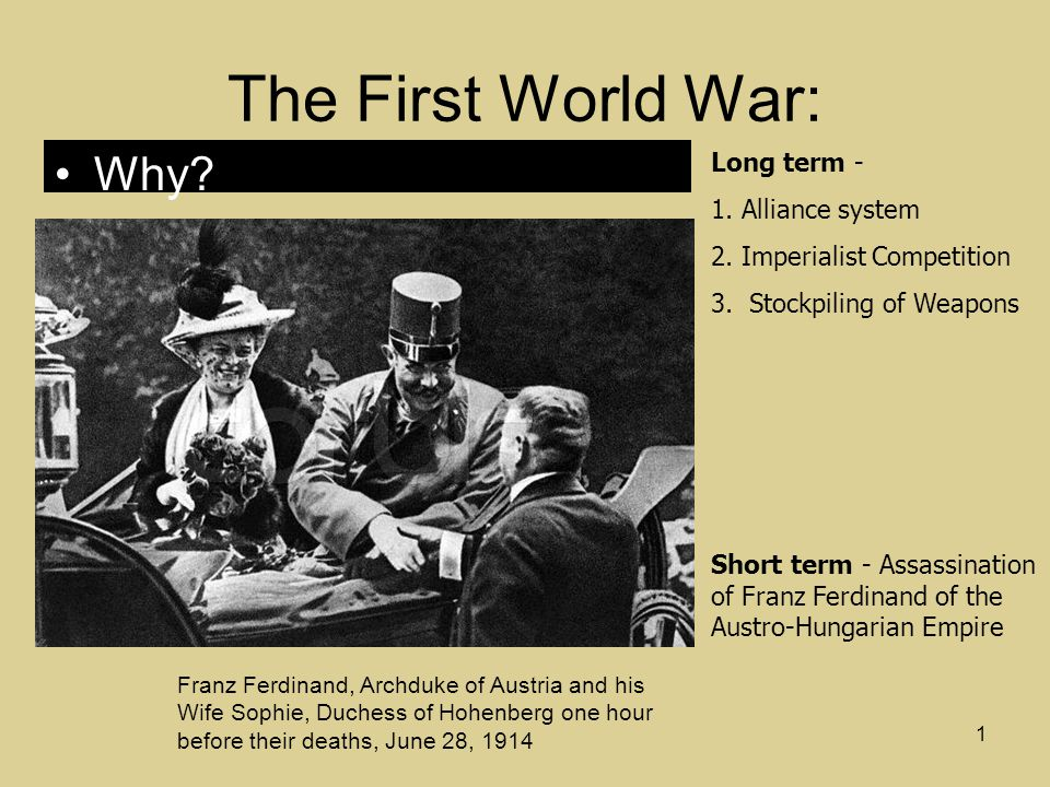 the causes of the first world war The assassination of archduke franz ferdinand signalled the rapid slide into world war, but this wasn't the only cause there were underlying causes in the run-up to the first world war.