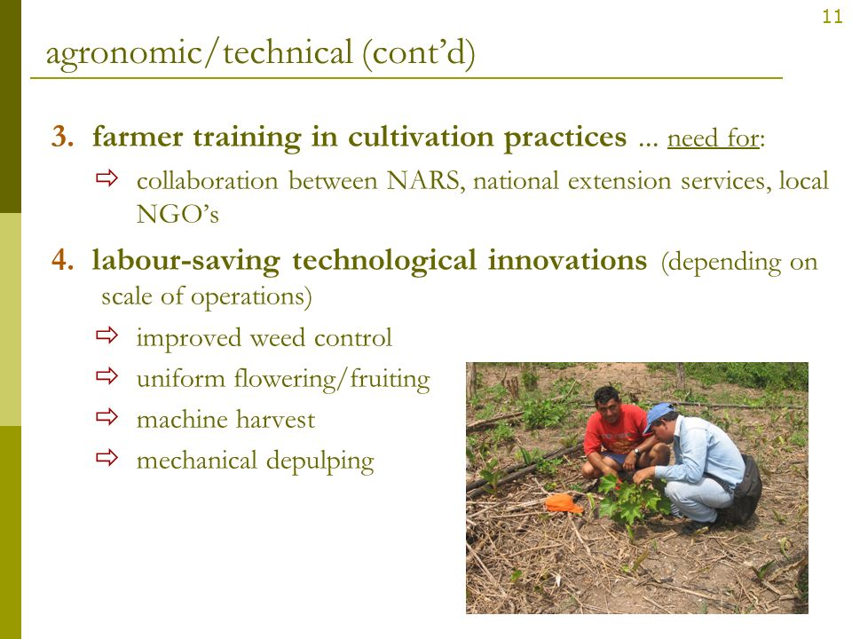 agronomic/technical (cont'd)