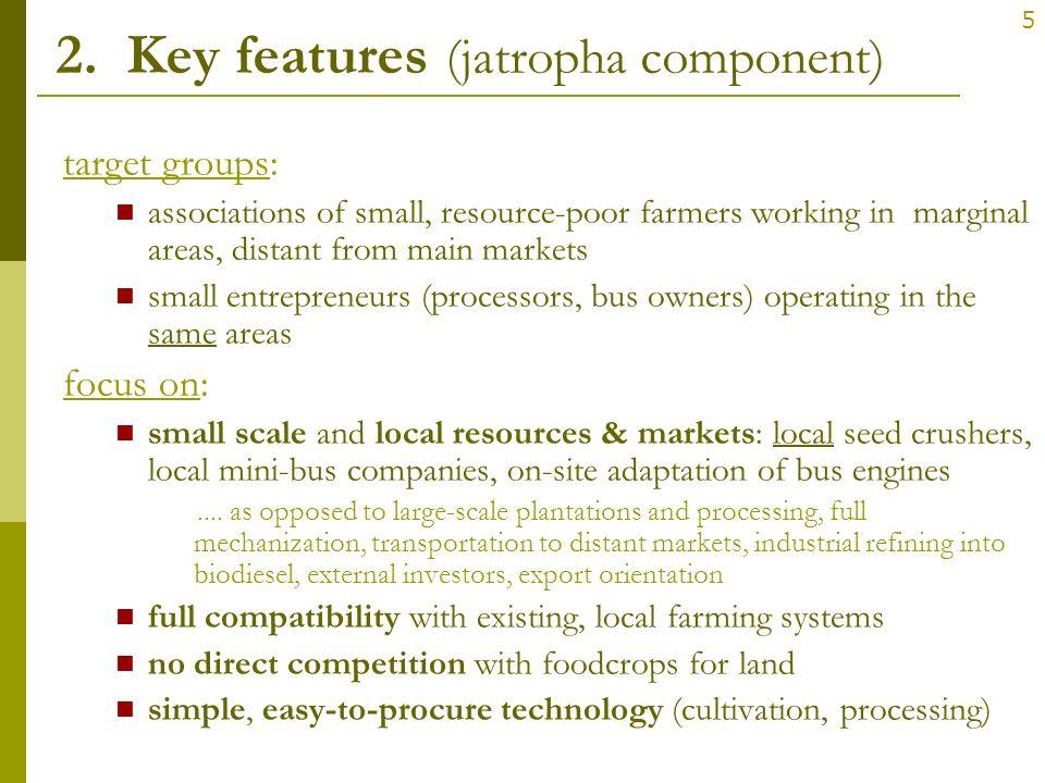 2. Key features (jatropha component)