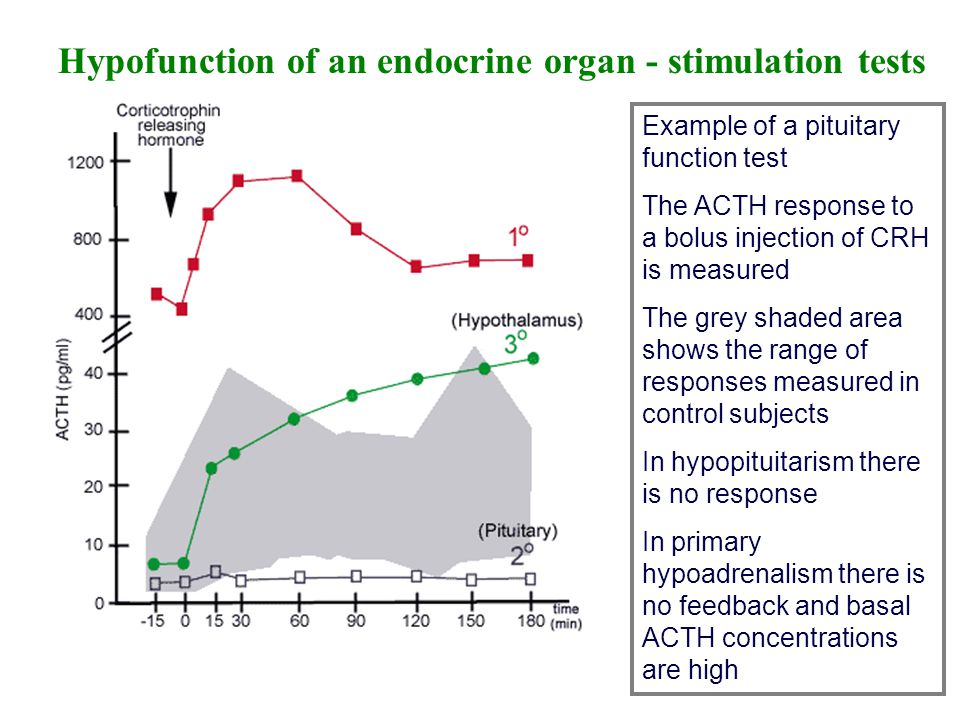 Physiology II: The Nervous, Immune, and Endocrine Systems ...
