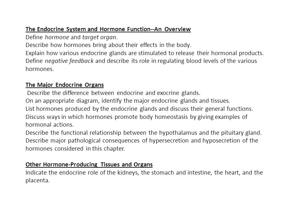 The Endocrine System And Hormone Function An Overview Define