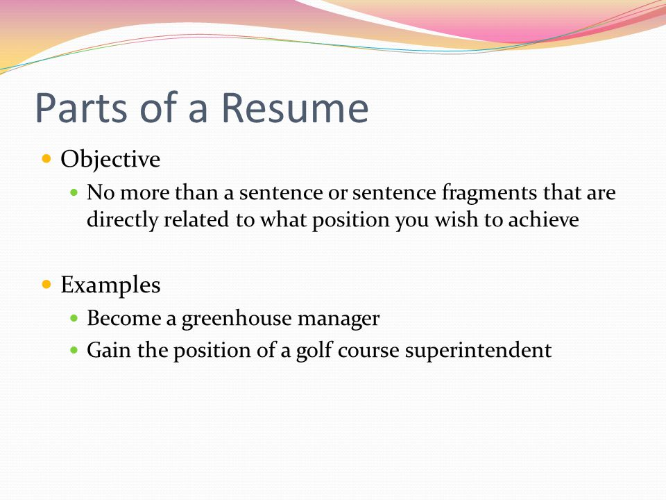 Parts of a Resume Objective Examples