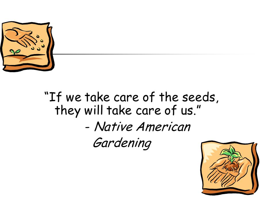 If we take care of the seeds, they will take care of us.