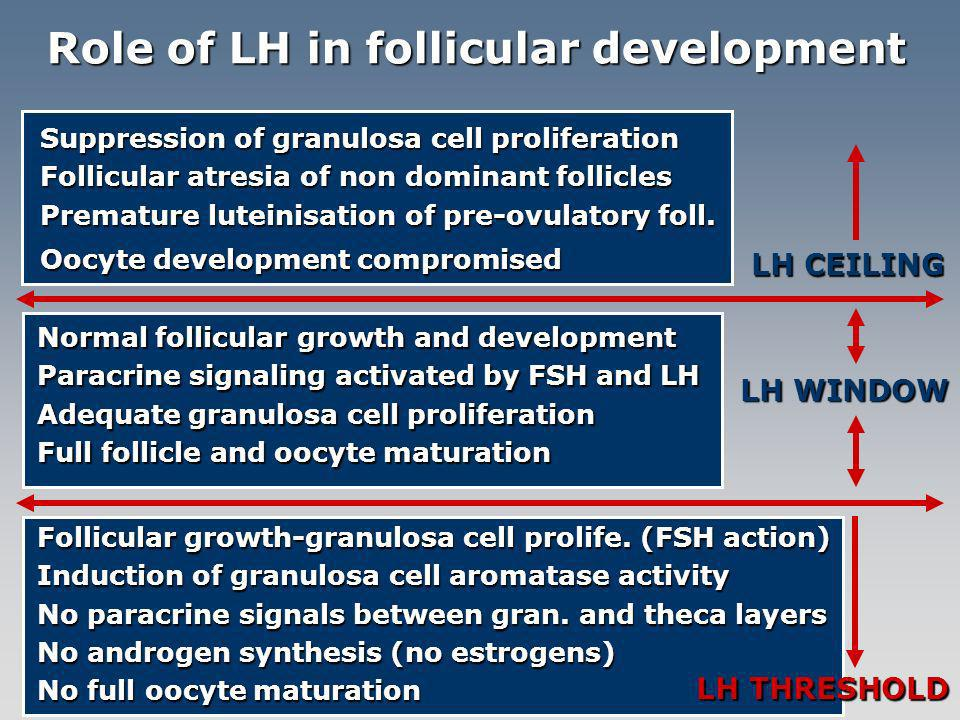 Role of LH in follicular development