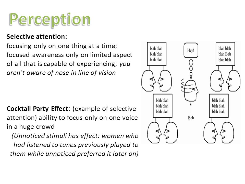 "theories of attention and perception Anne treisman explored the mechanisms of attention, first in audition and later in  visual perception she proposed the ""filter attenuation"" theory."