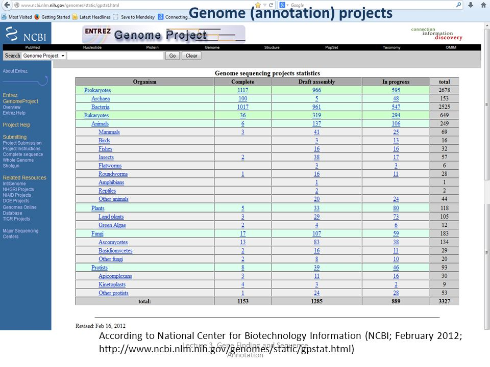how to find gene sequence in ncbi
