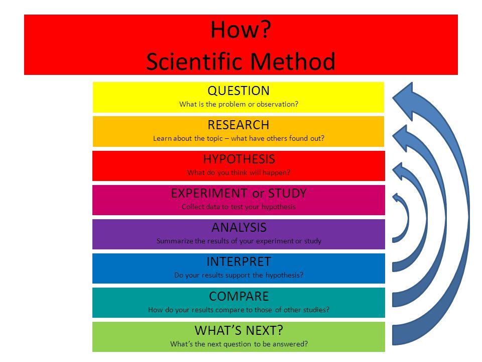 scientific method test questions pdf