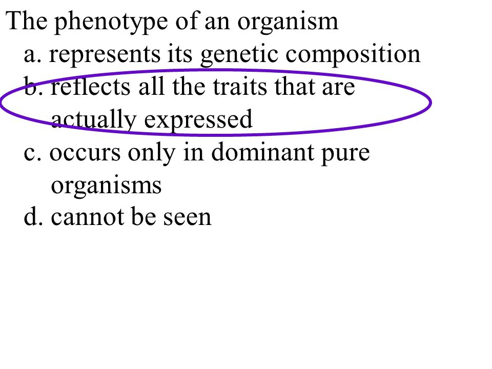 Genetic Makeup Of An Organism Unique The Phenotype Of An Organism A Represents Its Genetic Composition B