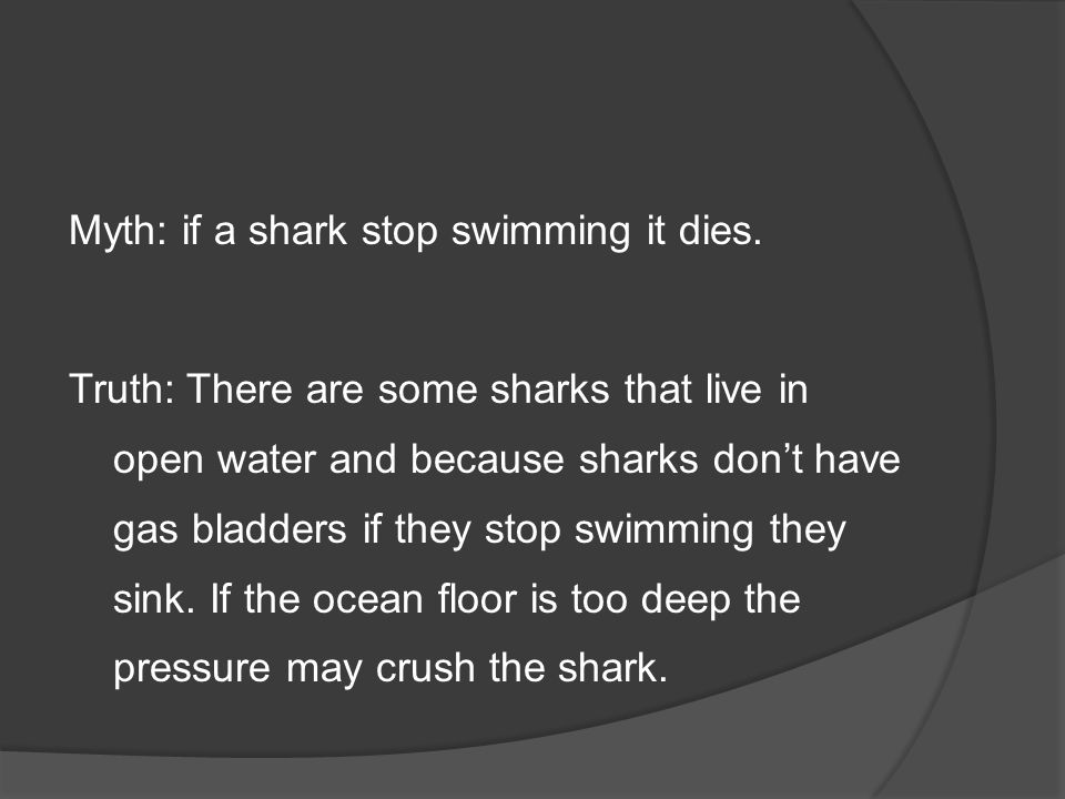 Myth: if a shark stop swimming it dies.