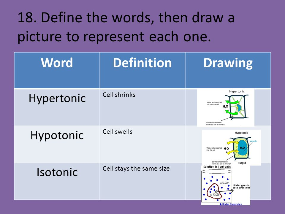 18. Define the words, then draw a picture to represent each one.