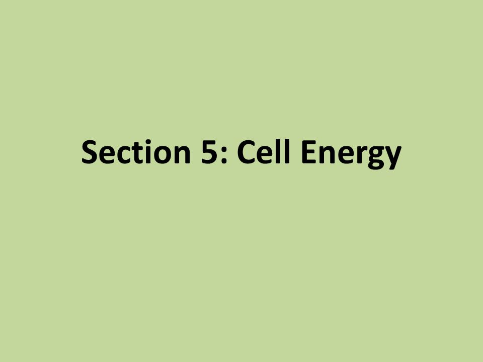 Section 5: Cell Energy