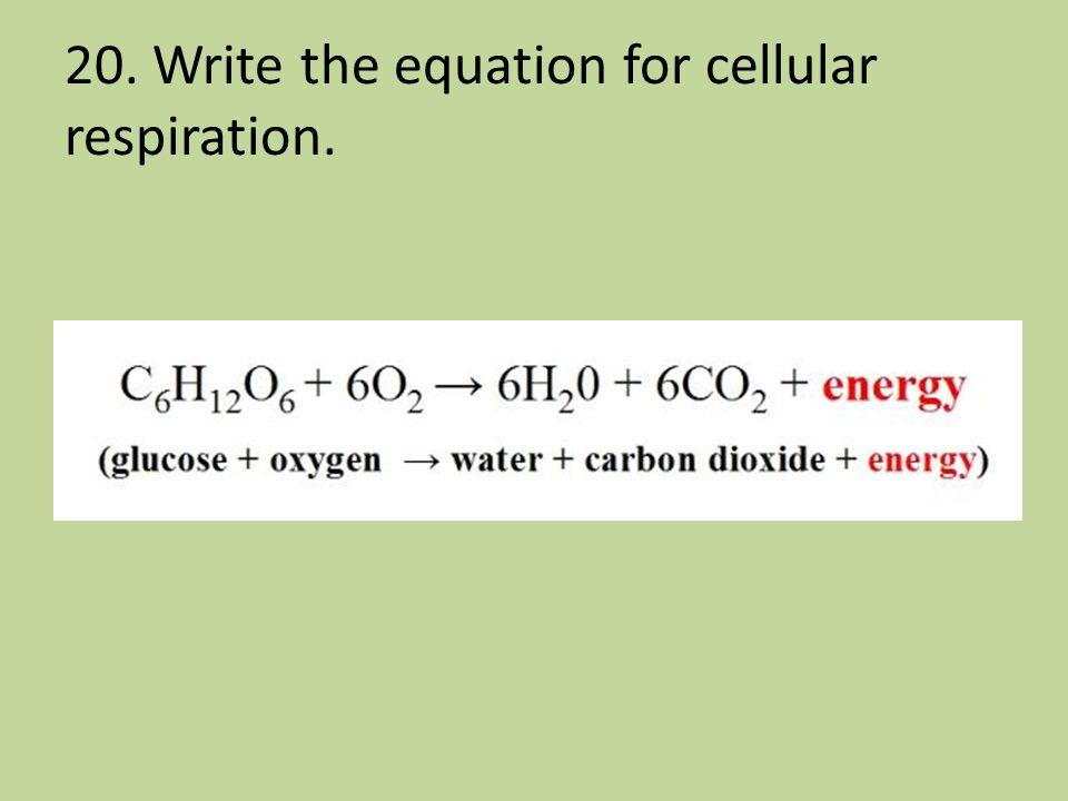 20. Write the equation for cellular respiration.