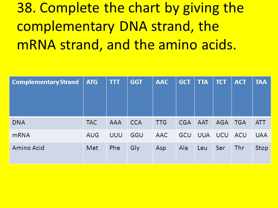 38. Complete the chart by giving the complementary DNA strand, the mRNA strand, and the amino acids.