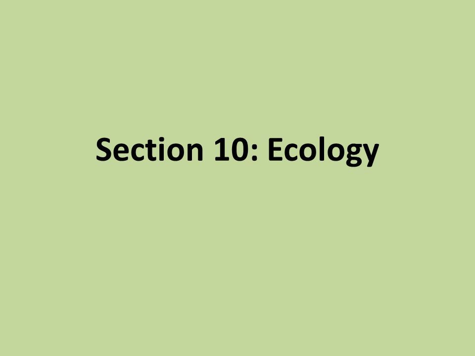 Section 10: Ecology