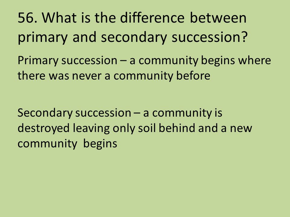 56. What is the difference between primary and secondary succession