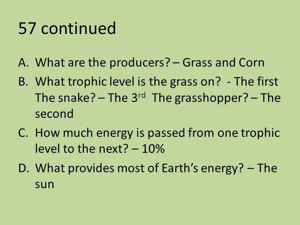 57 continued What are the producers – Grass and Corn